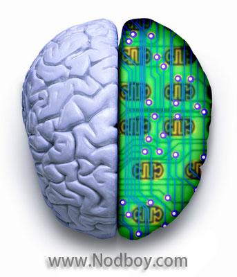 computer-brain-or-brain-computer